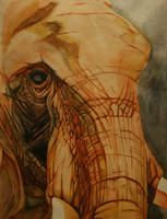 Texture Study by frechstudios