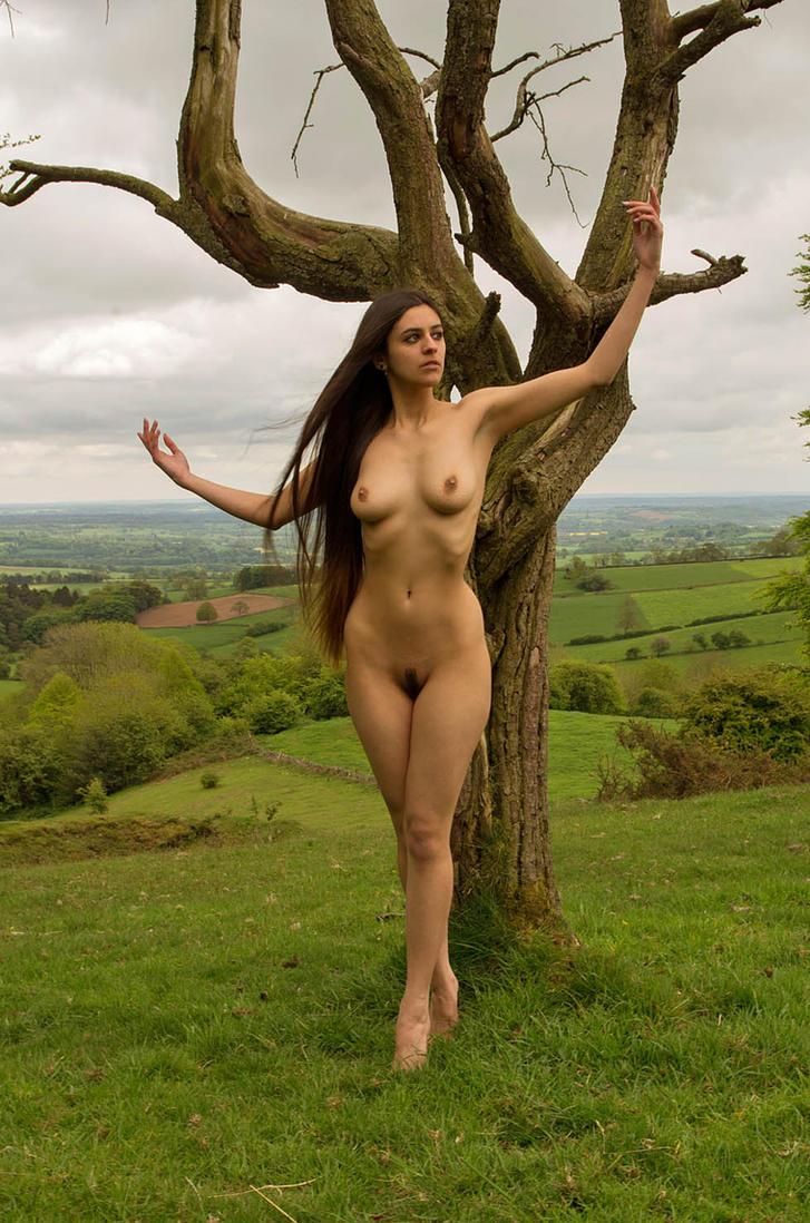Natures ballet by stevepl