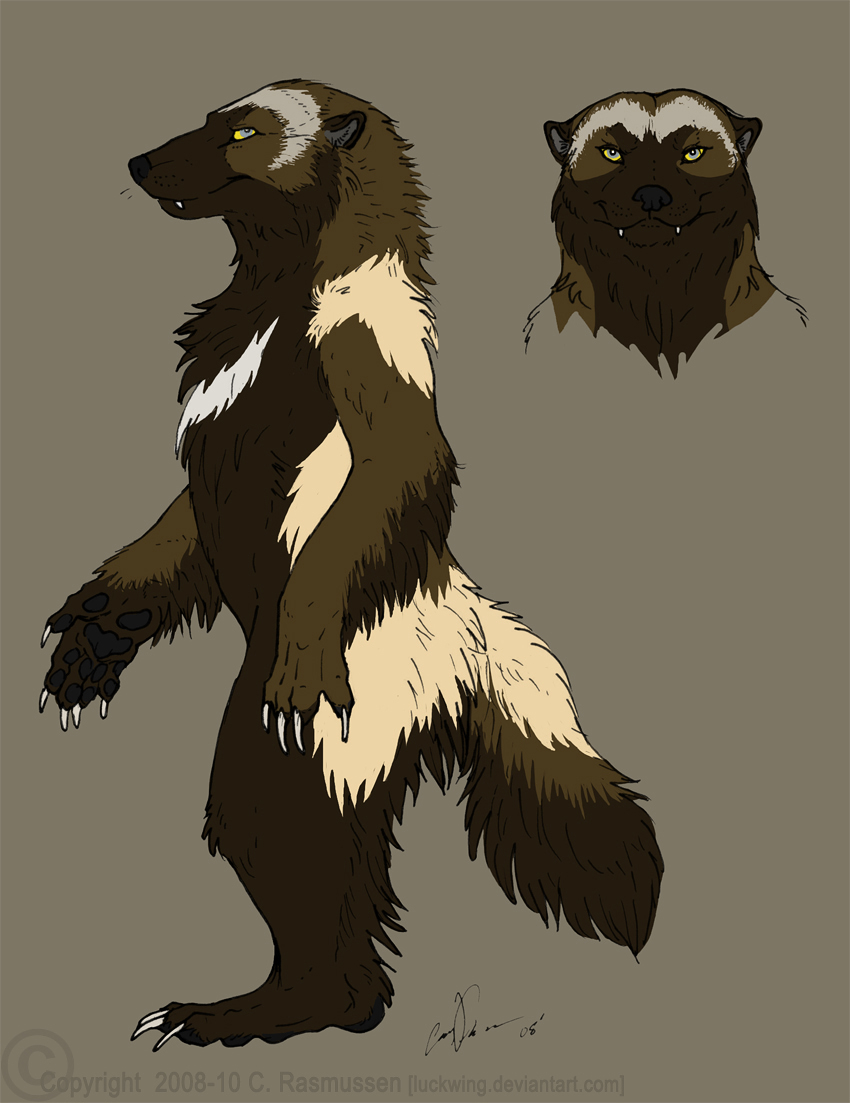 Wolverine Character Sheet By Luckwing On DeviantArt
