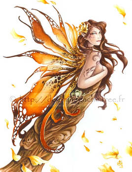 The fairy Legendya
