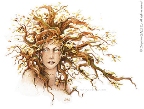 The red hair dryad