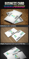 Simple Modern Business Card by tngraphic