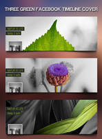 Nice Nature Green Facebook Timeline . by tngraphic