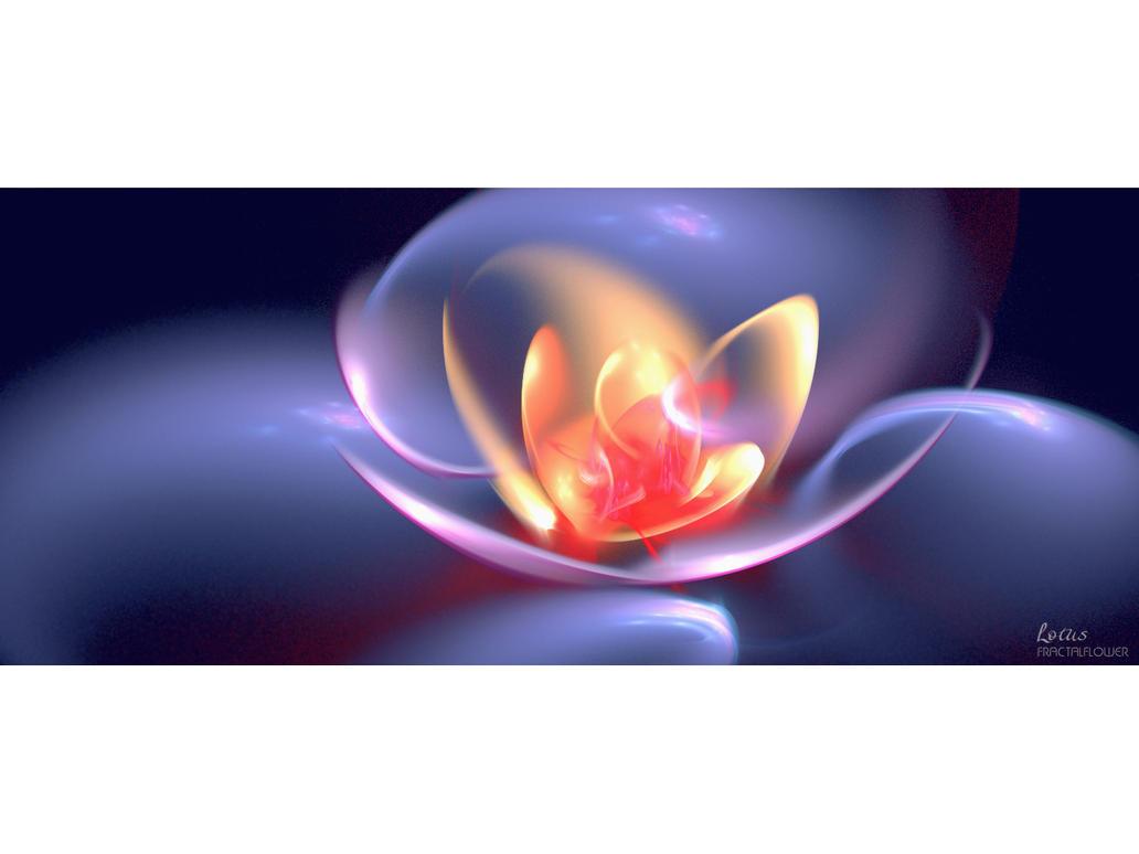 LOTUS fractalflower by love1008