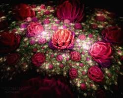 Flowerings 27 Roses by love1008