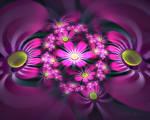 Flowerings 30