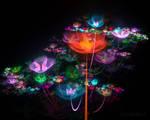 Flowerings 75