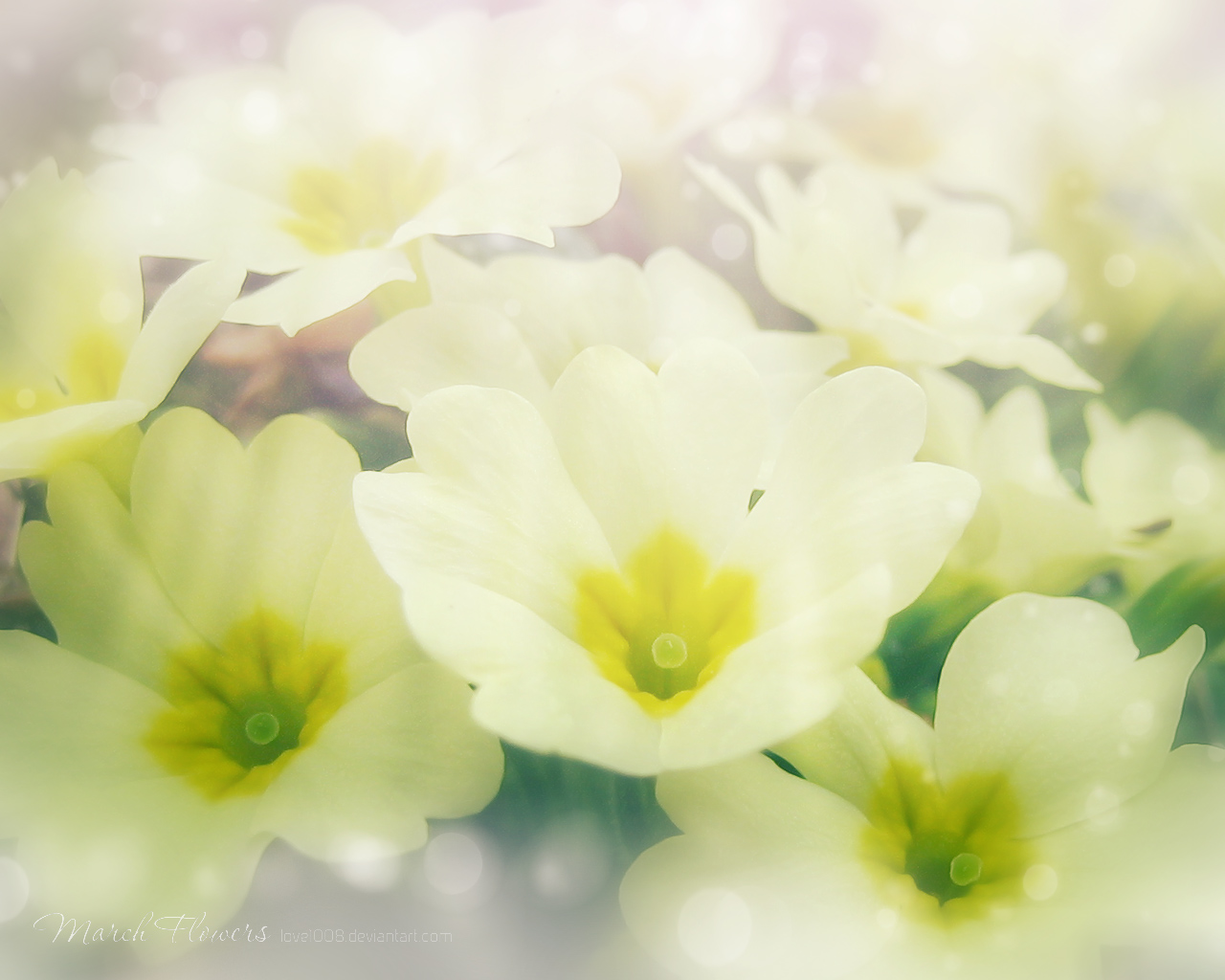 March Flowers 9 by love1008 on DeviantArt