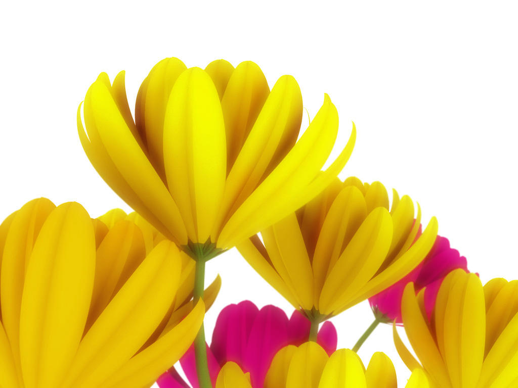 FLOWERS 11 3D by love1008