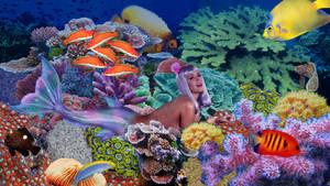Katy Perry Mermaid In Playful Mood