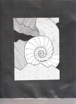 Shell in Ink