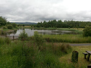 Banwen Lake v3
