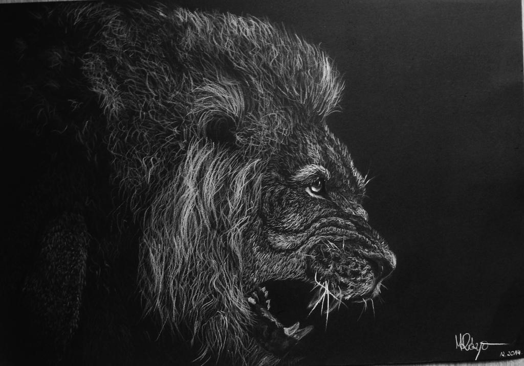 Lion by Malenarosa