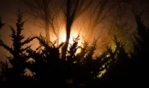 Fog Night 1 by Saber-Cow