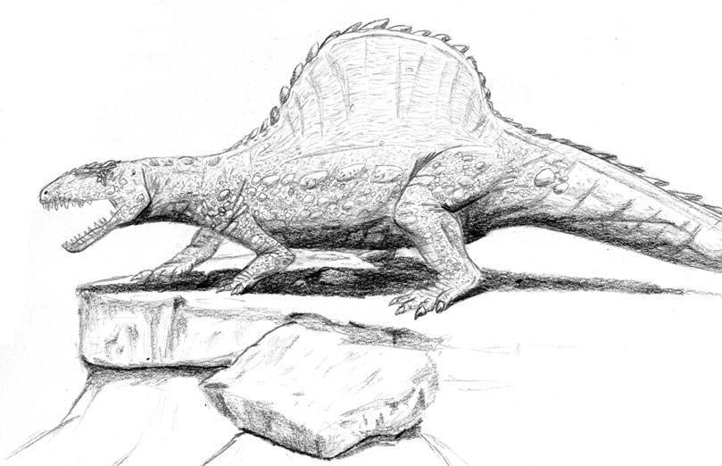 Arizonasaurus WIP by TarryAGoat