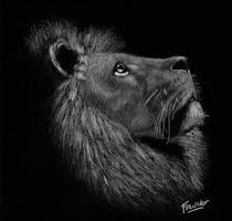 Lion White on Black