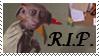 R.I.P. Dobby by phoenixtsukino