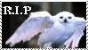 R.I.P. Hedwig by phoenixtsukino