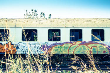 B.A.D. Train Cemetery 04 by bornadancer