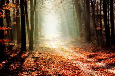 Autumn001 by KiaraJoy