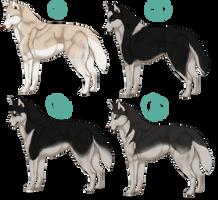 Husky adoptables ( Close ) by Qavvikk