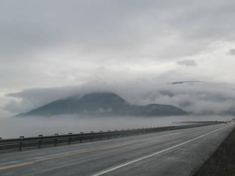 September fog II by Qavvikk