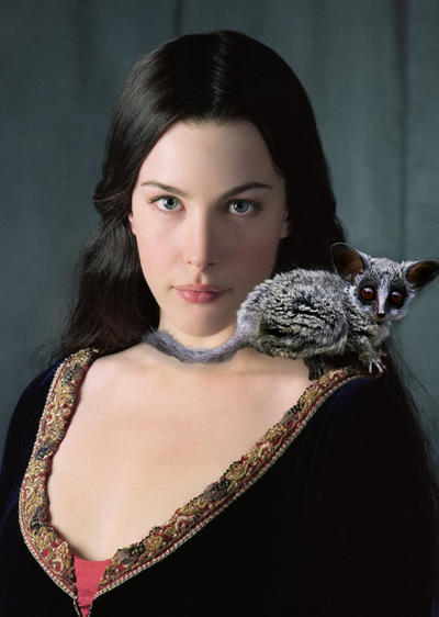 Arwen and Her Daemon by LJ-Todd