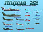 Angels 22 Aircraft Montage
