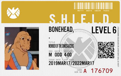 shield agent bonehead by connorm1