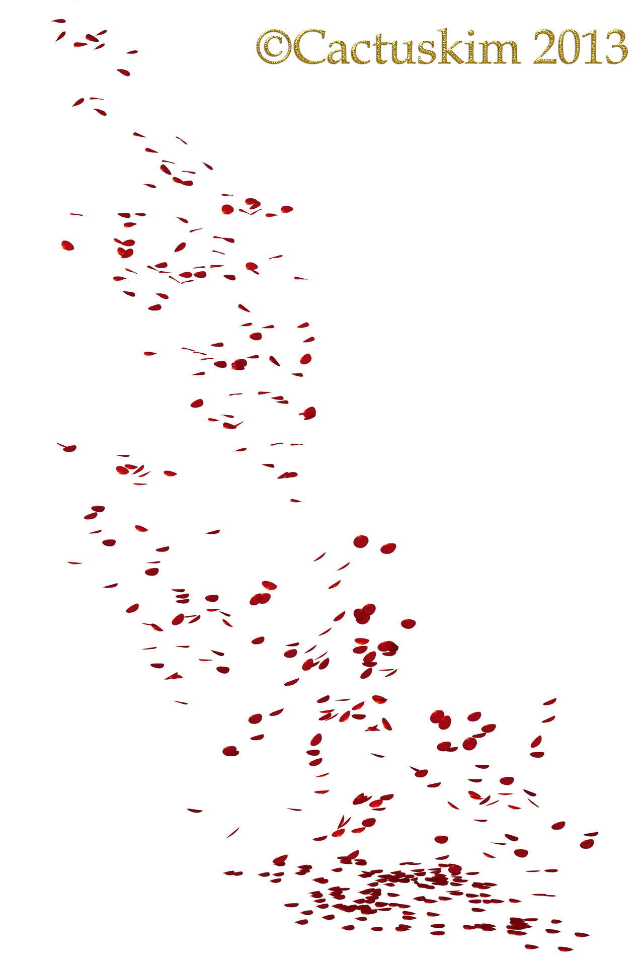 Signature of the Week Petals Falling From A Flower