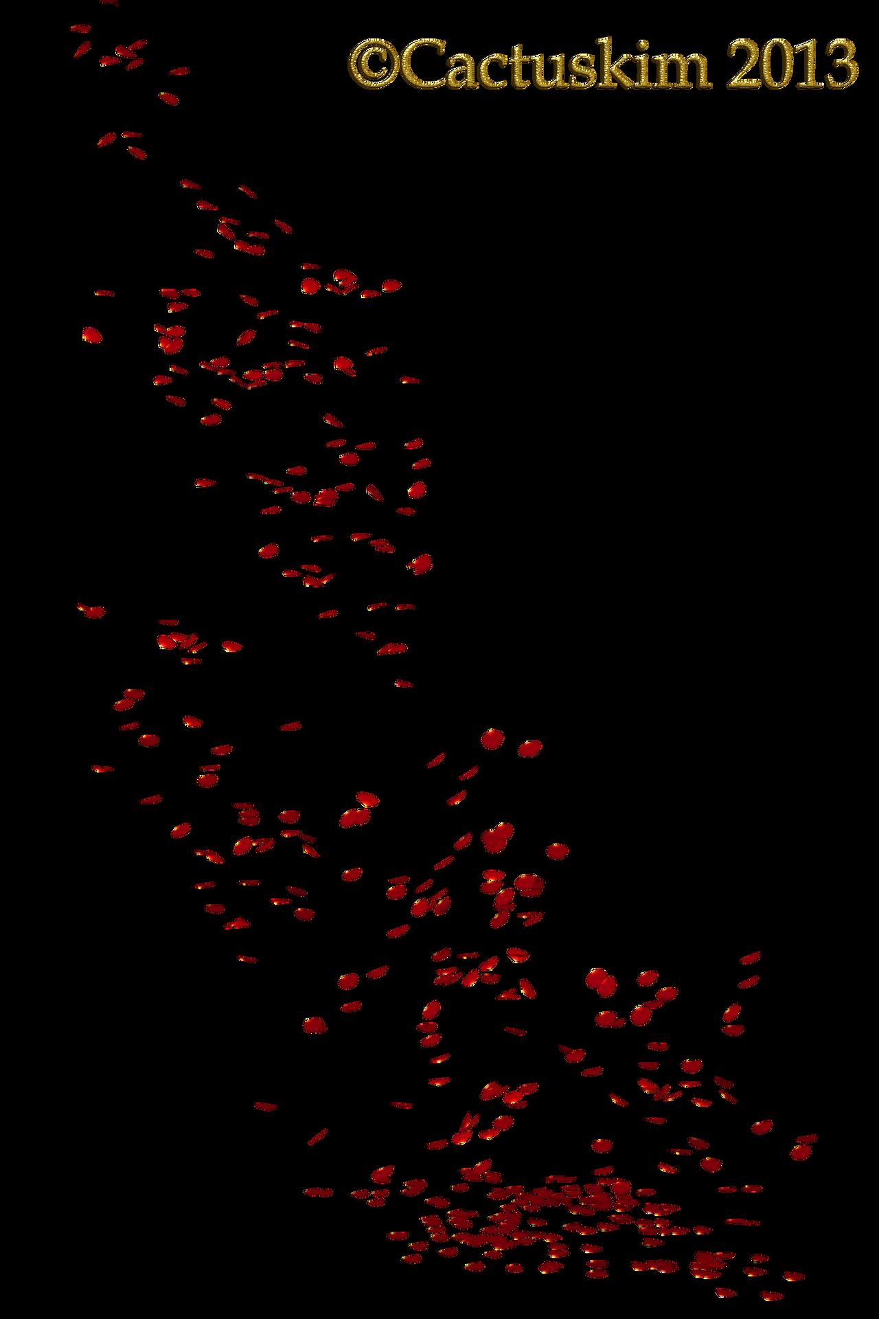 Falling Petals KL by cactuskim on DeviantArt Petals Falling From A Flower