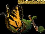 Fairy Butterfly Boat_KL
