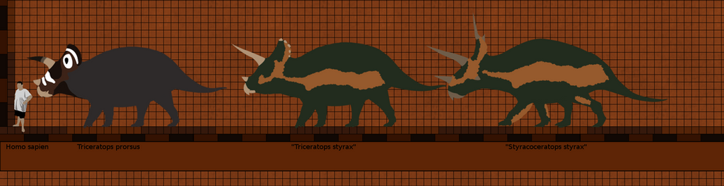 WASECHD 2 triceratops by Paleop