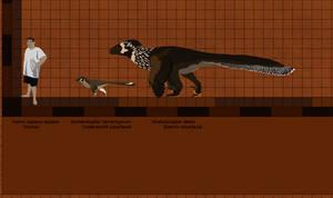Hell Creek Dromaeosaurs