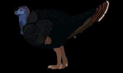 Caudipteryx zoui ongoing by Paleop