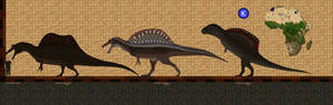 Spino through the ages