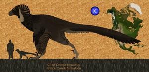 Dromaeosaur of prince creek