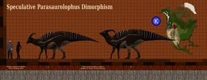 Para dimorphism