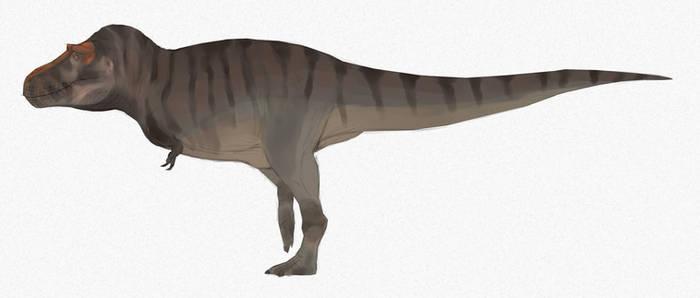Smack Rex draft