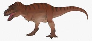 Book of Smack rex