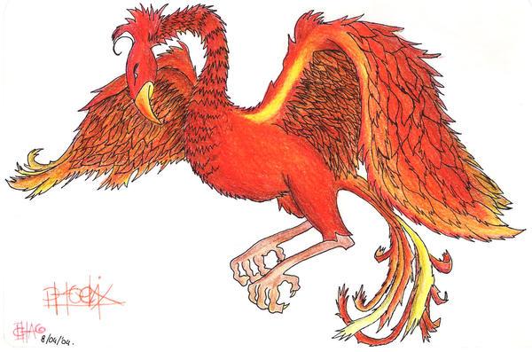 Dumbledores Phoenix Fawkes By ClarissaE On DeviantArt