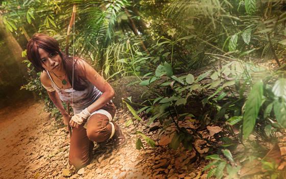 Tomb Raider: Reborn - Bow