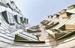 Gehry Wave