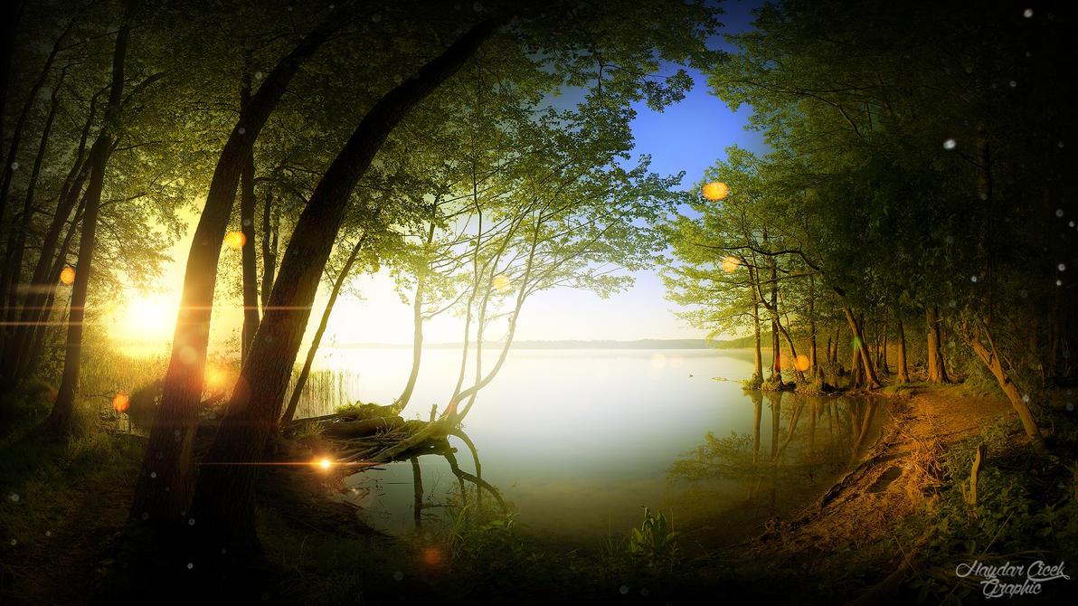Nature Of Shine