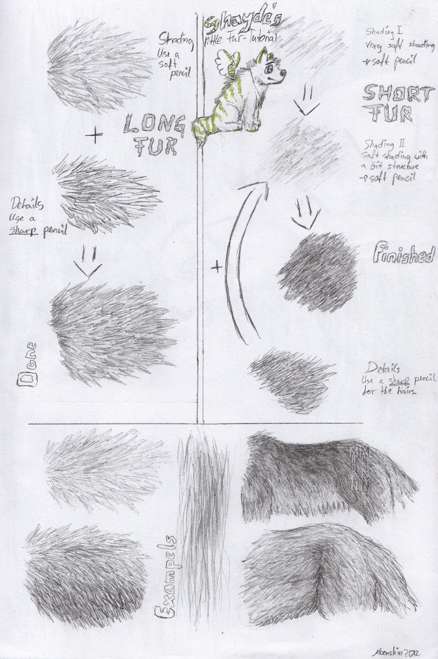 Realistic Fur Tutorial By Equive Realistic Fur Tutorial By Equive