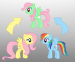 Pony Fushion: Fluttershy And Rainbow Dash