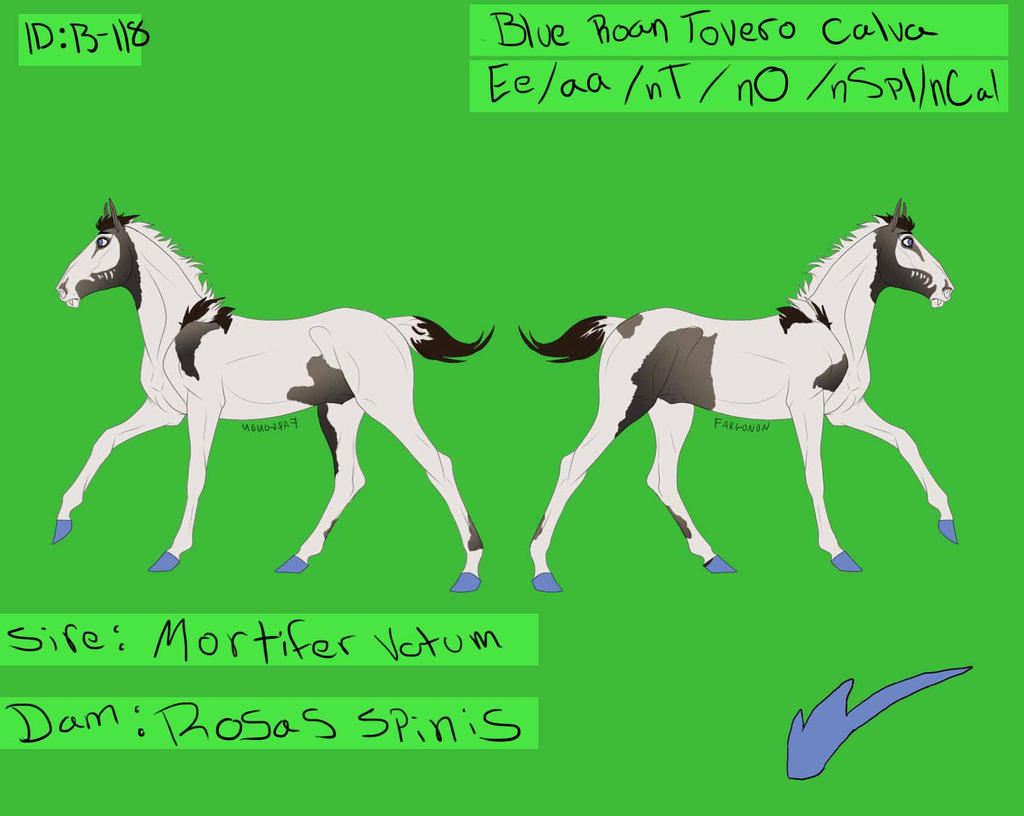 B-118 Breeding Colt for GingerLisous by TheMoon122