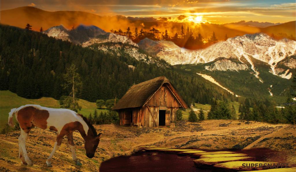 Golden Sunset by supersnappz16