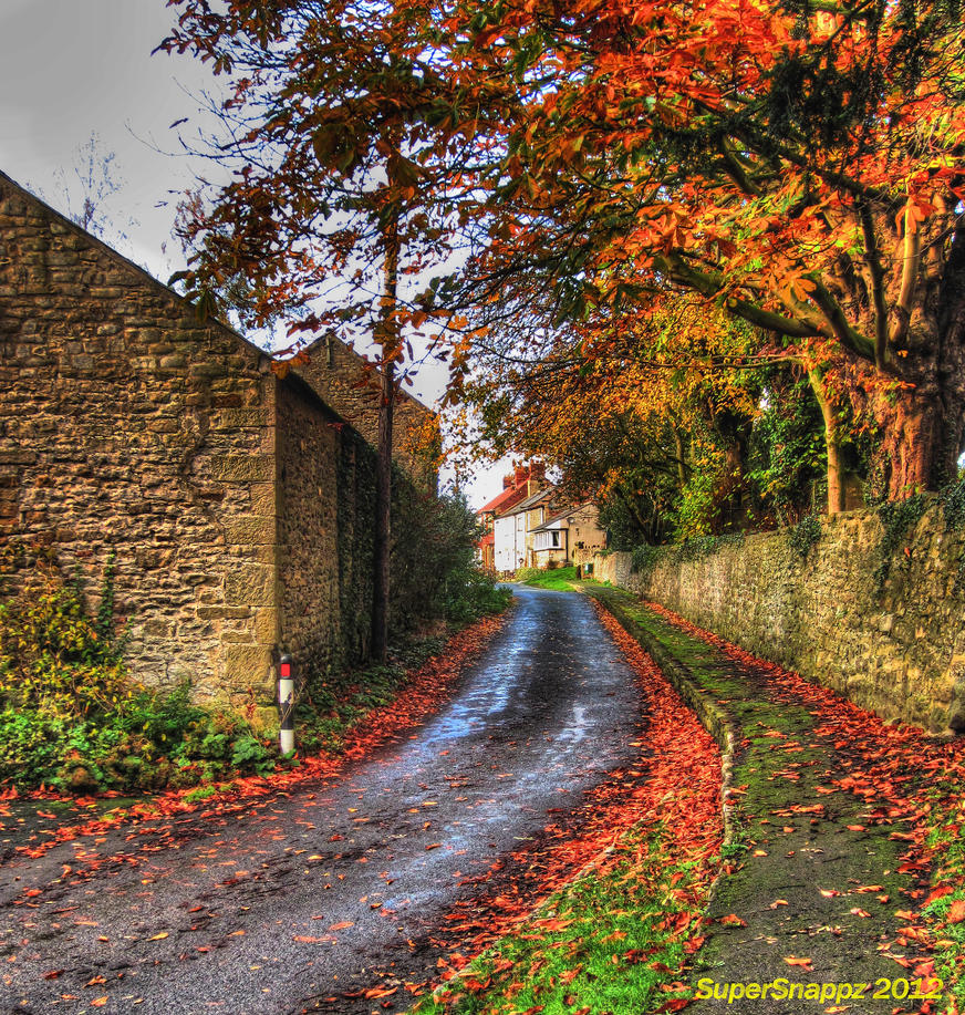 Autumn road. by supersnappz16