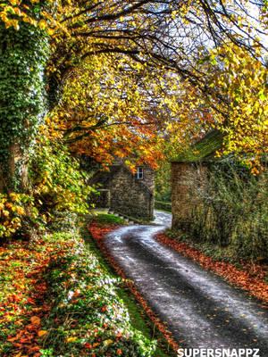Autumn Lane by supersnappz16